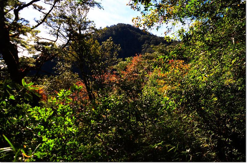2255高點南望基那吉山前山頭