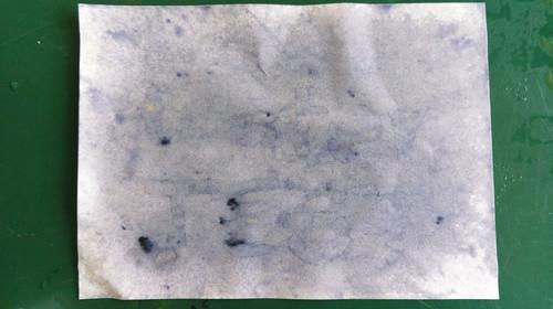 澱粉酶藝術04