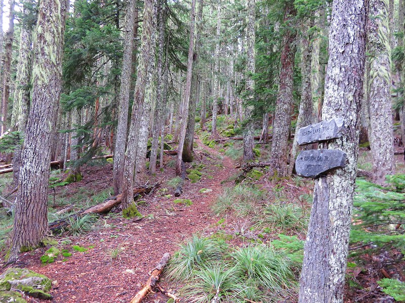 North Lake Trail junction with the Rainy Lake Trail