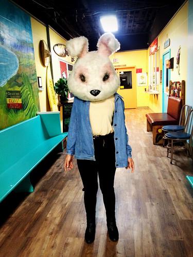 Ana Bunny (Nov 21 2015)
