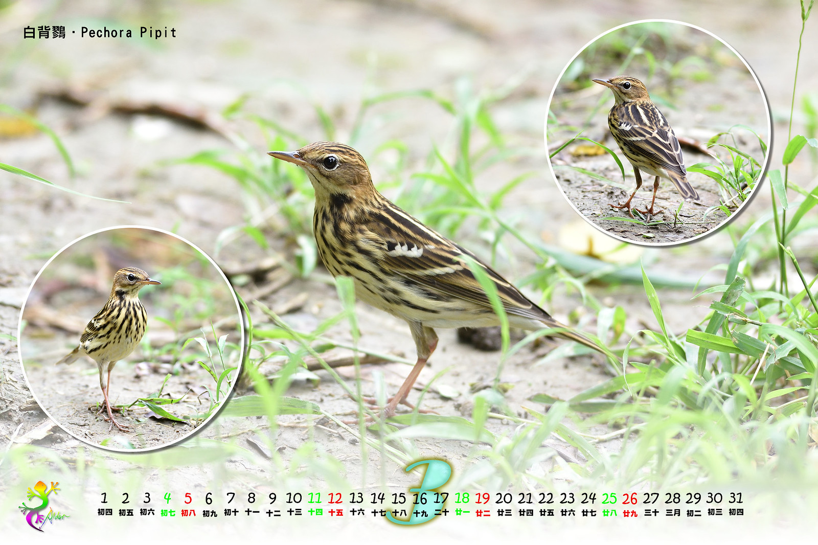 Calendar2017_2_04