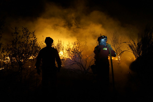 Lucha Contra Incendios Forestales (#LCIF)