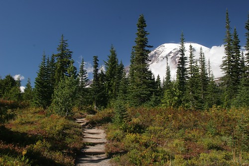Bench Lake - Mt Rainier