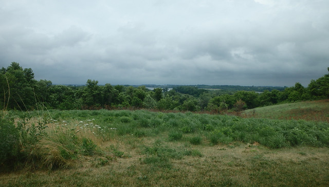 gray clouds in the top half, the bottom half green grasses with trees in the distance