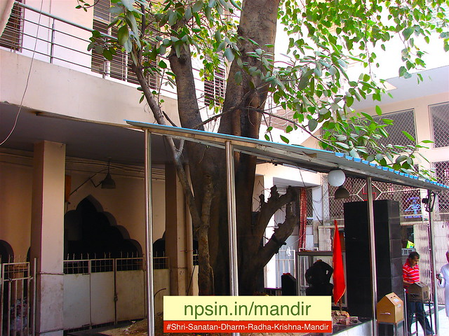 Shri Shani Dham under holy Peepal Tree between entrance and main prayer hall.