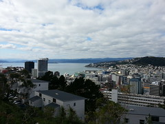 View from Victoria University of Wellington