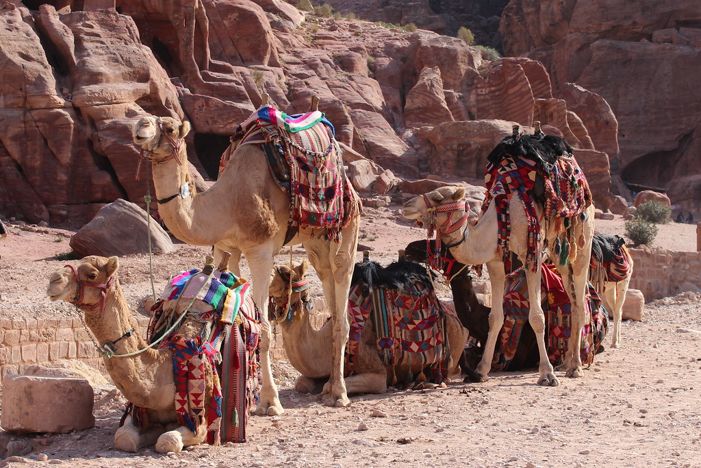 Matka Jordaniaan. Jordania on helppo ja turvallinen matkakohde