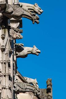 Wasserspeier Cathédrale Saint-Lazare, Autun