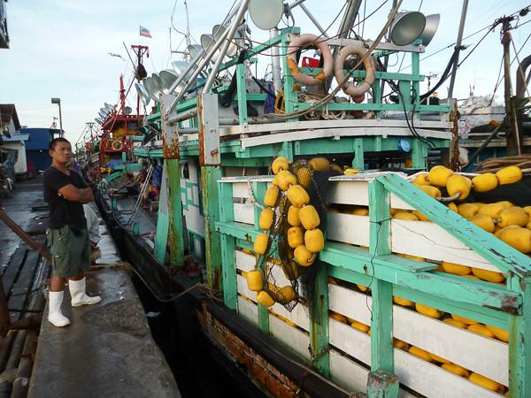 Kota Kinabalu Trawlers