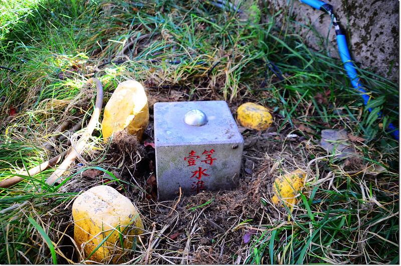 清境農場國民賓館聯勤測量隊一等水準點(# 陸檢8509 Elev. 1690 m) 1