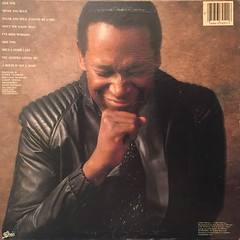 LUTHER VANDROSS:NEVER TOO MUCH(JACKET B)