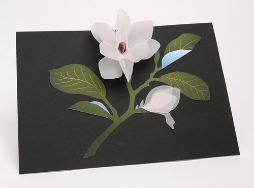UWP Luxe Pop Up Magnolia Card Interior