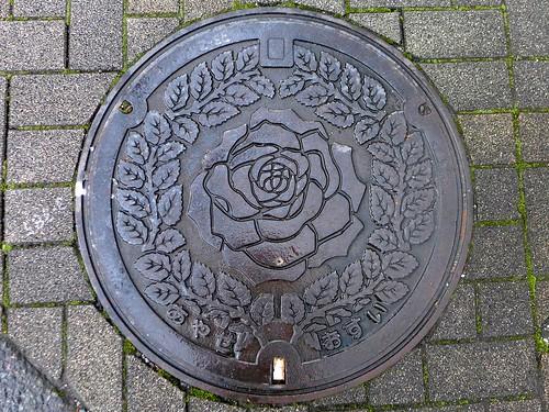 Ayase Kanagawa, manhole cover (神奈川県綾瀬市のマンホール)