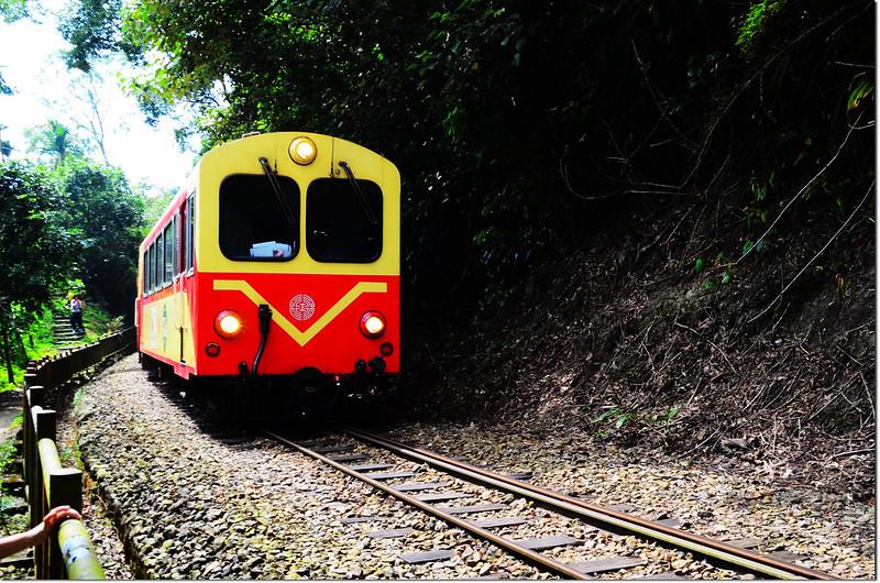 阿里山森林火車 2