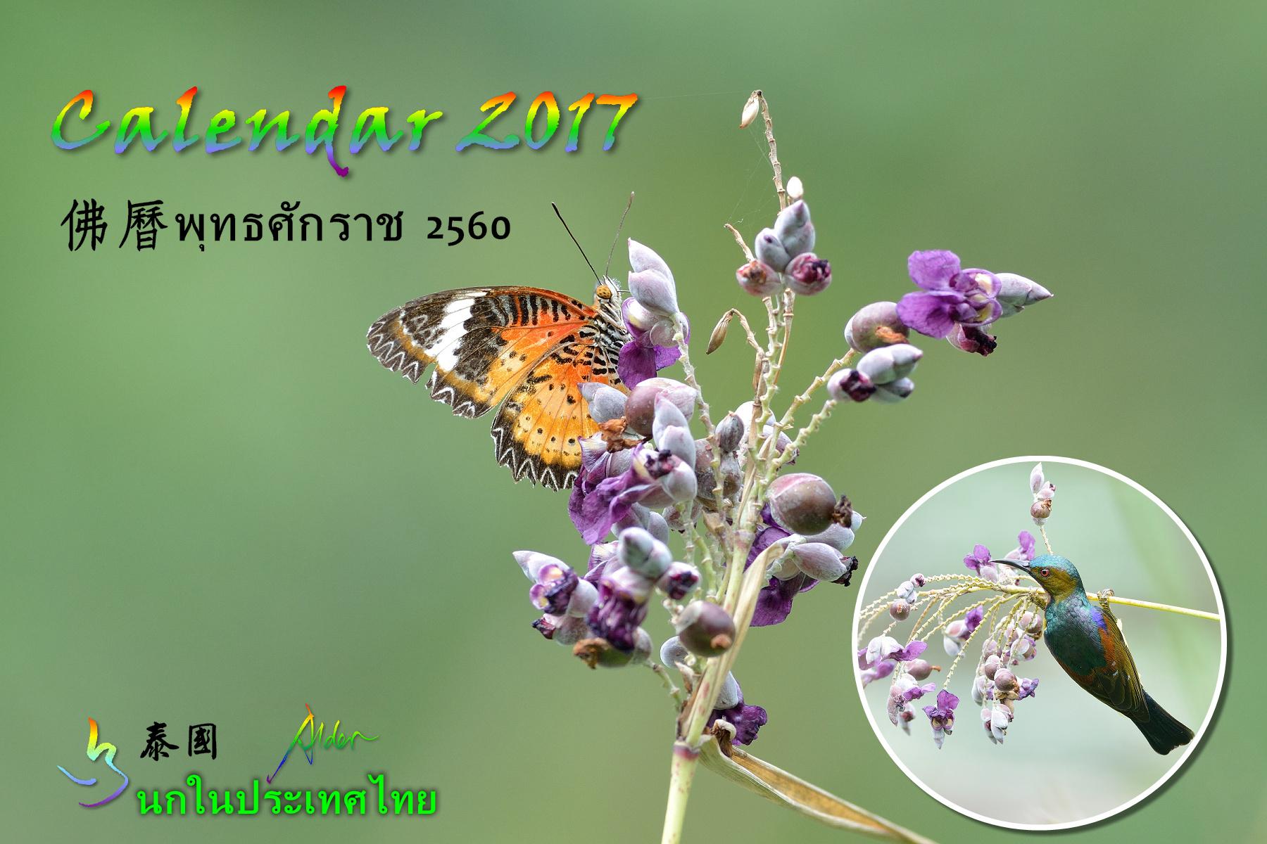 Thai Bird Calendar 2017_00