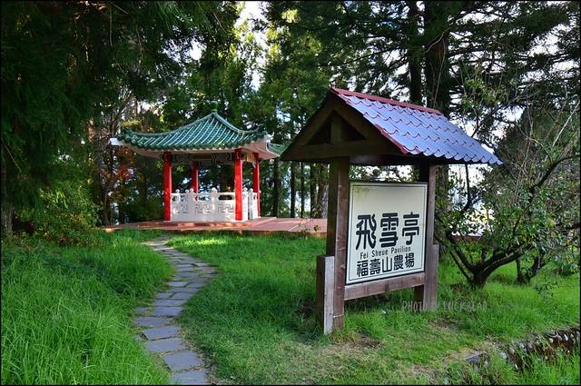 福壽山農場楓葉季018