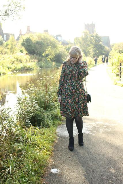 M&S Autumn Dress
