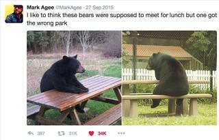 wrong park