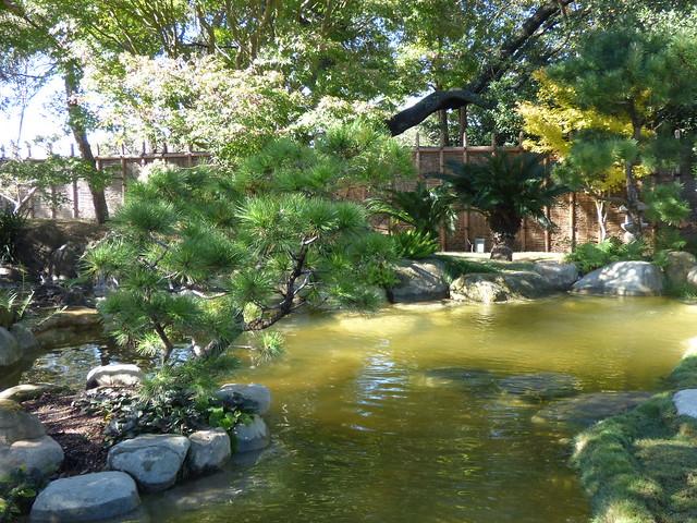 Photo Diary San Antonio Botanical Garden