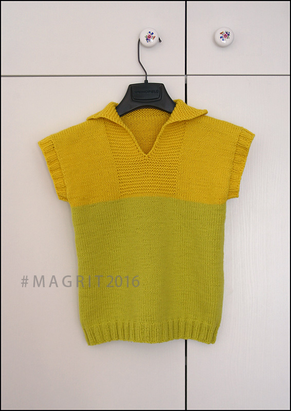 zuti prsluk - yellow vest