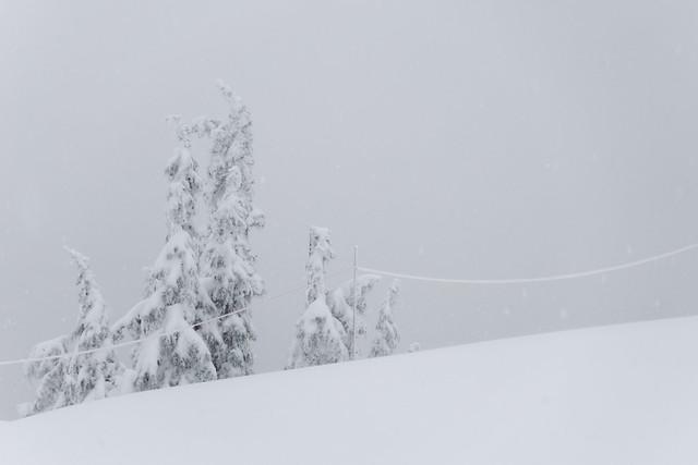 Mt Seymour, 2 Dec 2016