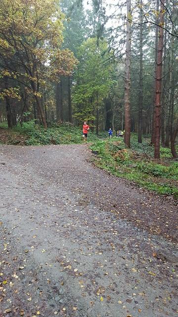 Wyre Forest parkrun 12/11/2016