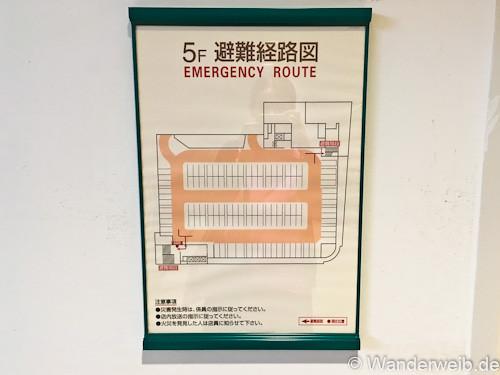 erdbeben (8 von 11)