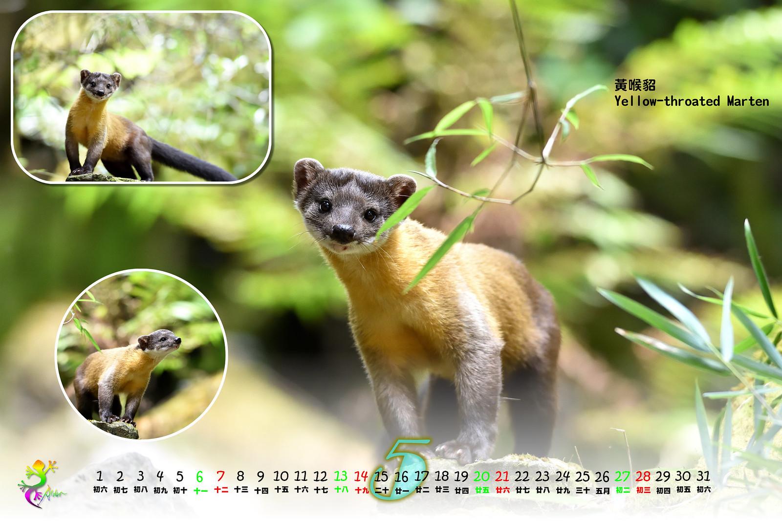 Calendar2017_2_06