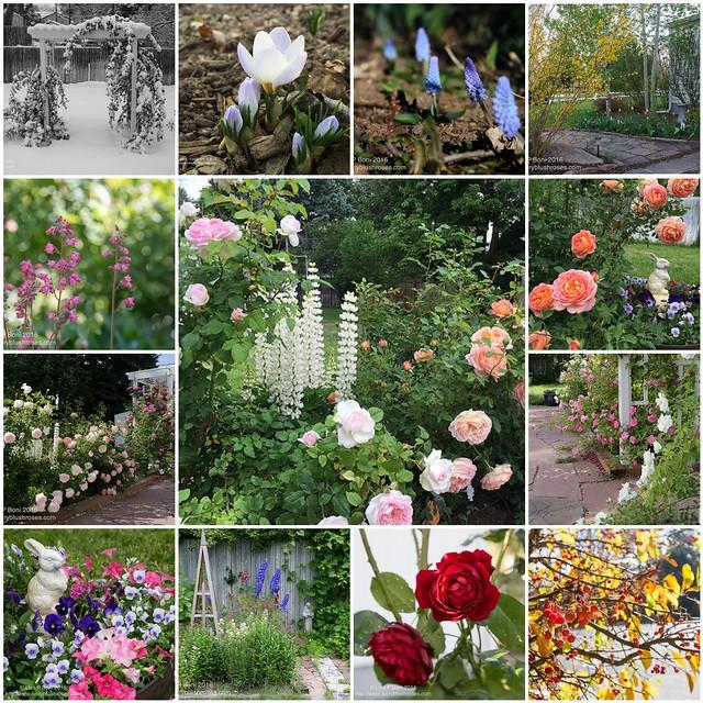 2016 Yard and Garden