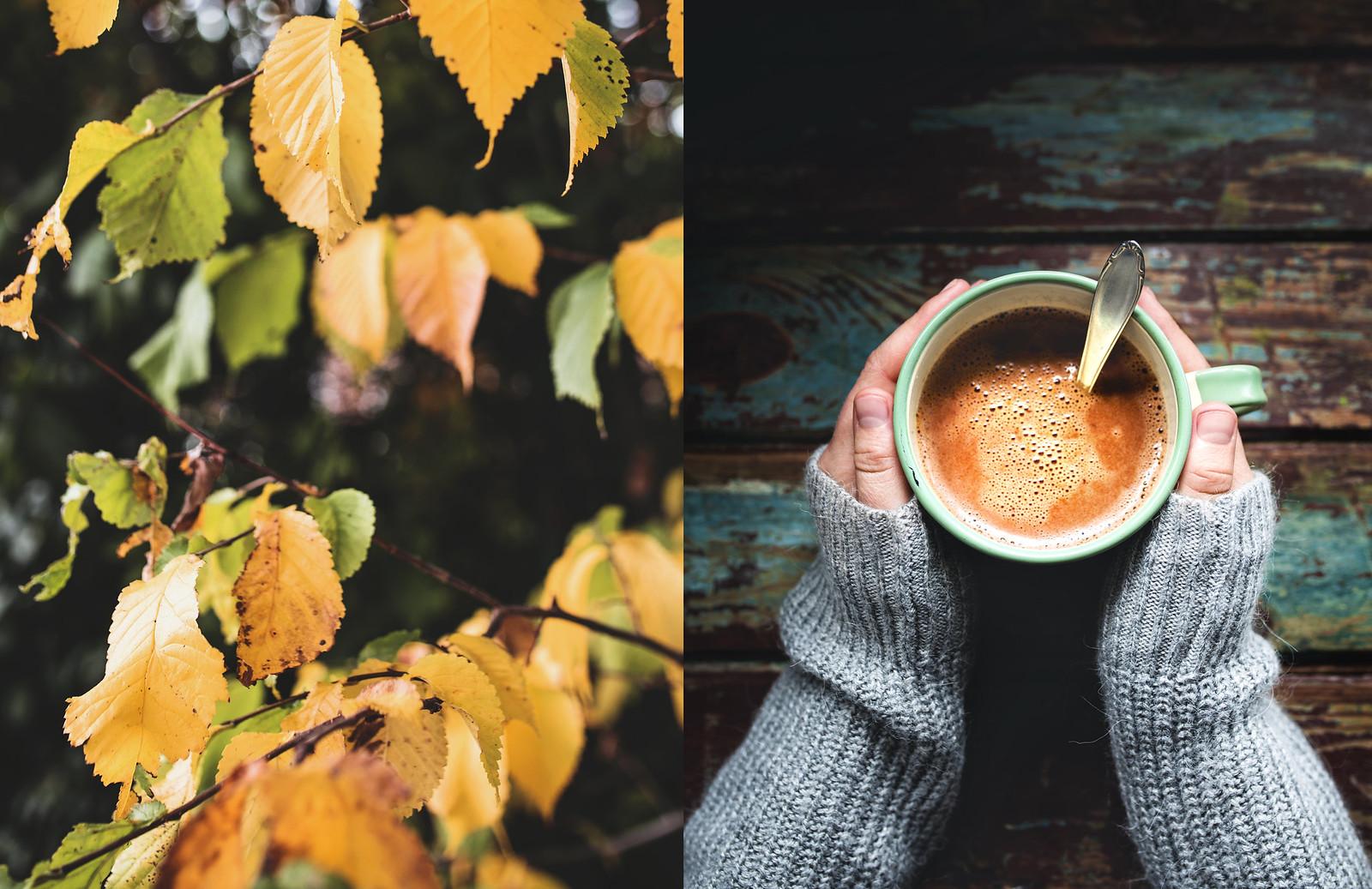 Varm choklad - Evelinas Ekologiska