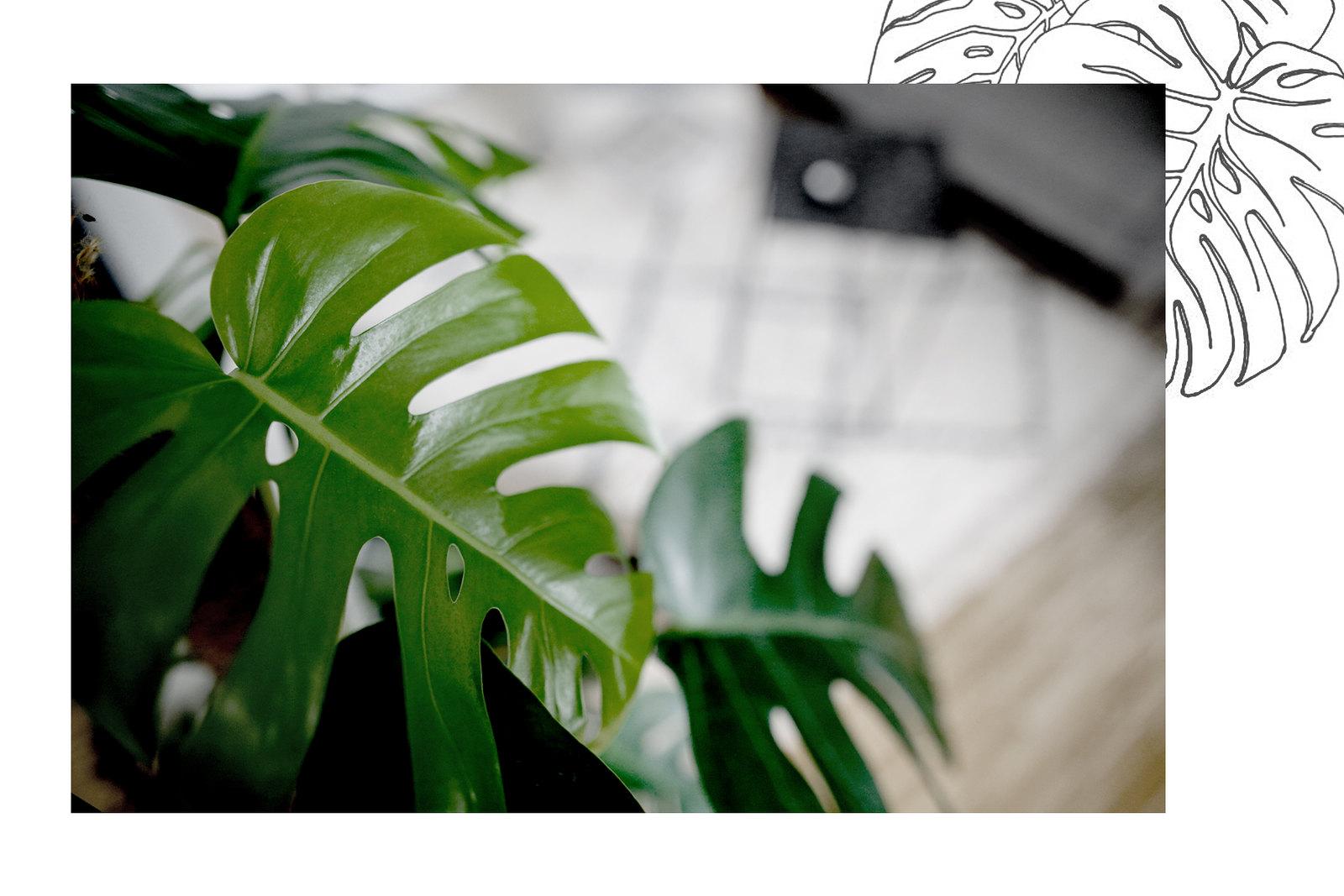 home interior loft loftlife loftliving home&living interior interiordesign decor styling lifestyle lifestyleblogger raum.freunde contour chair couch scandi design scandinavian moroccan beni ourain rug living-room minimal cats & dogs ricarda schernus 5