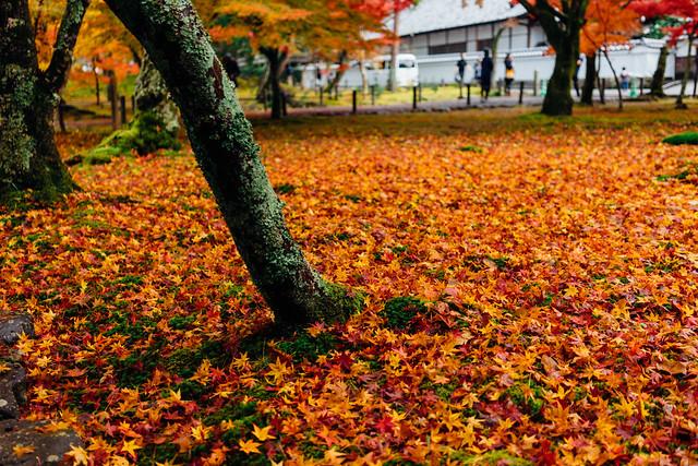 Kyoto_Nanzenji_11