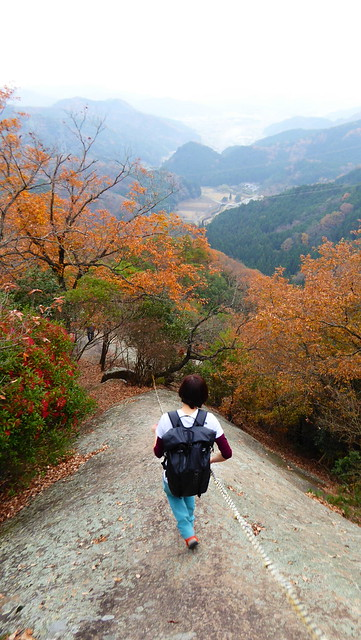明神山 (272)