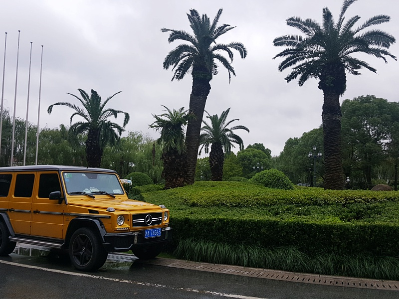 Mercedes G yellow
