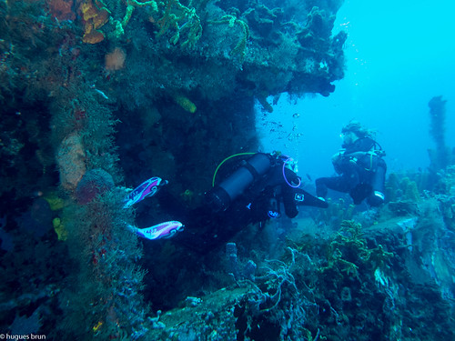 Bouillante, Epave Augustin Fresnel, Guadeloupe - France, La Rand'eau 7290.jpg