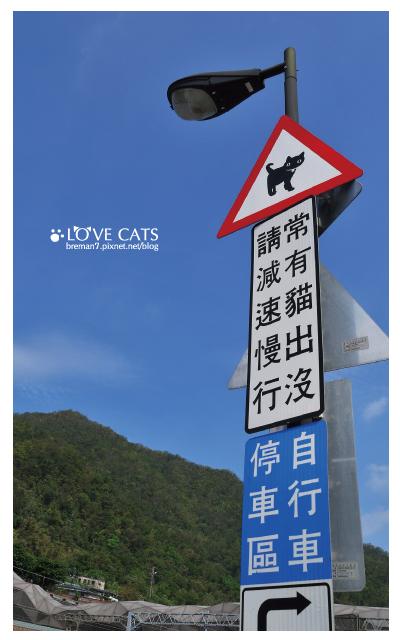侯硐貓村-6