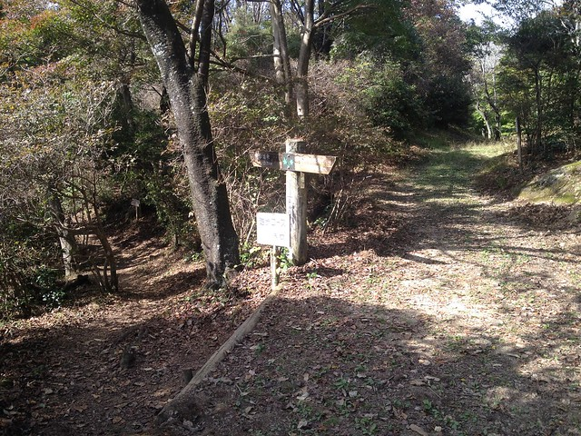 鬼岩公園 蓮華岩・太郎岩コース 東海自然歩道分岐