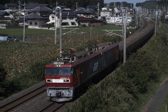_DSC6558