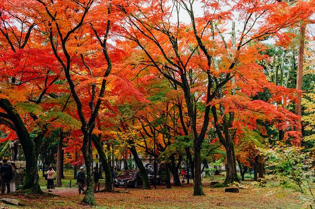 Kyoto_Nanzenji_27