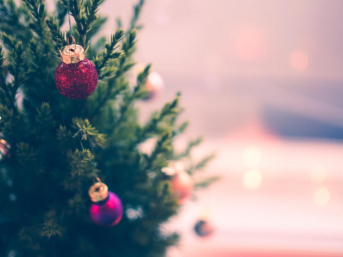 joulupuu5