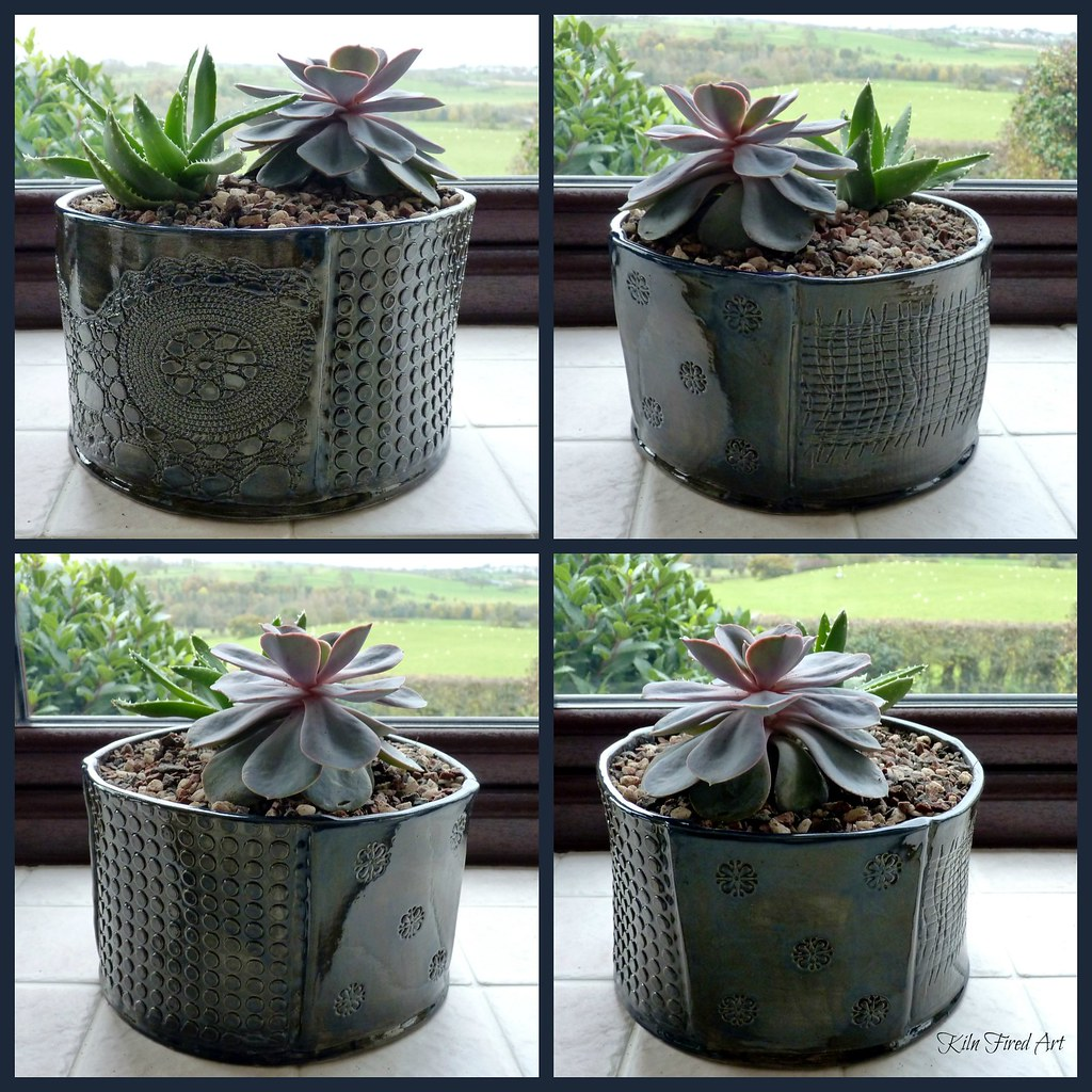 pots for succulents