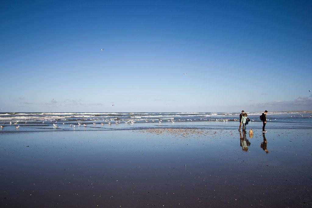 beach (7 of 17)