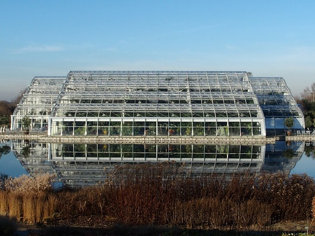 Tendrils: the 'floating' greenhouse at RHS Wisley