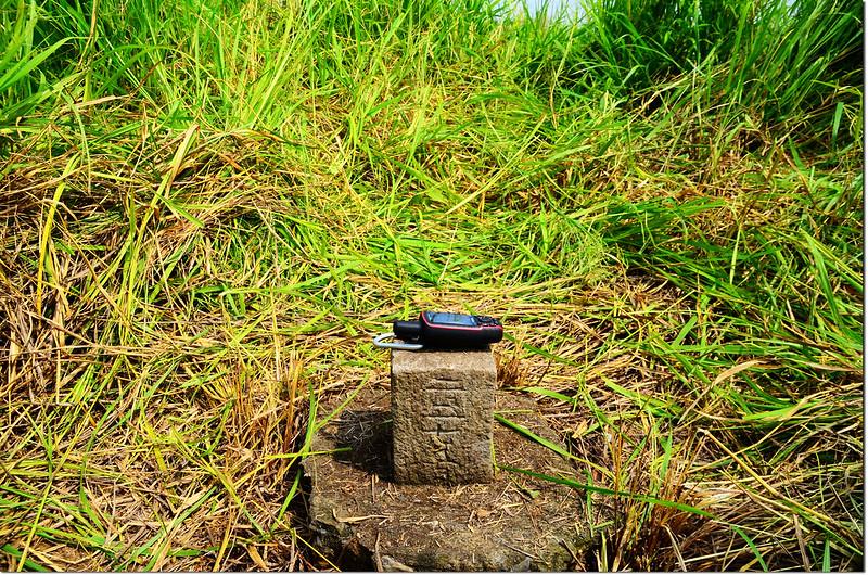 鳳梨山(鳳鼻山)不明圖根點(Elev. 83 m) 3