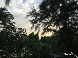 CIRCLEG 香港 遊記 九龍仔九園  (7)