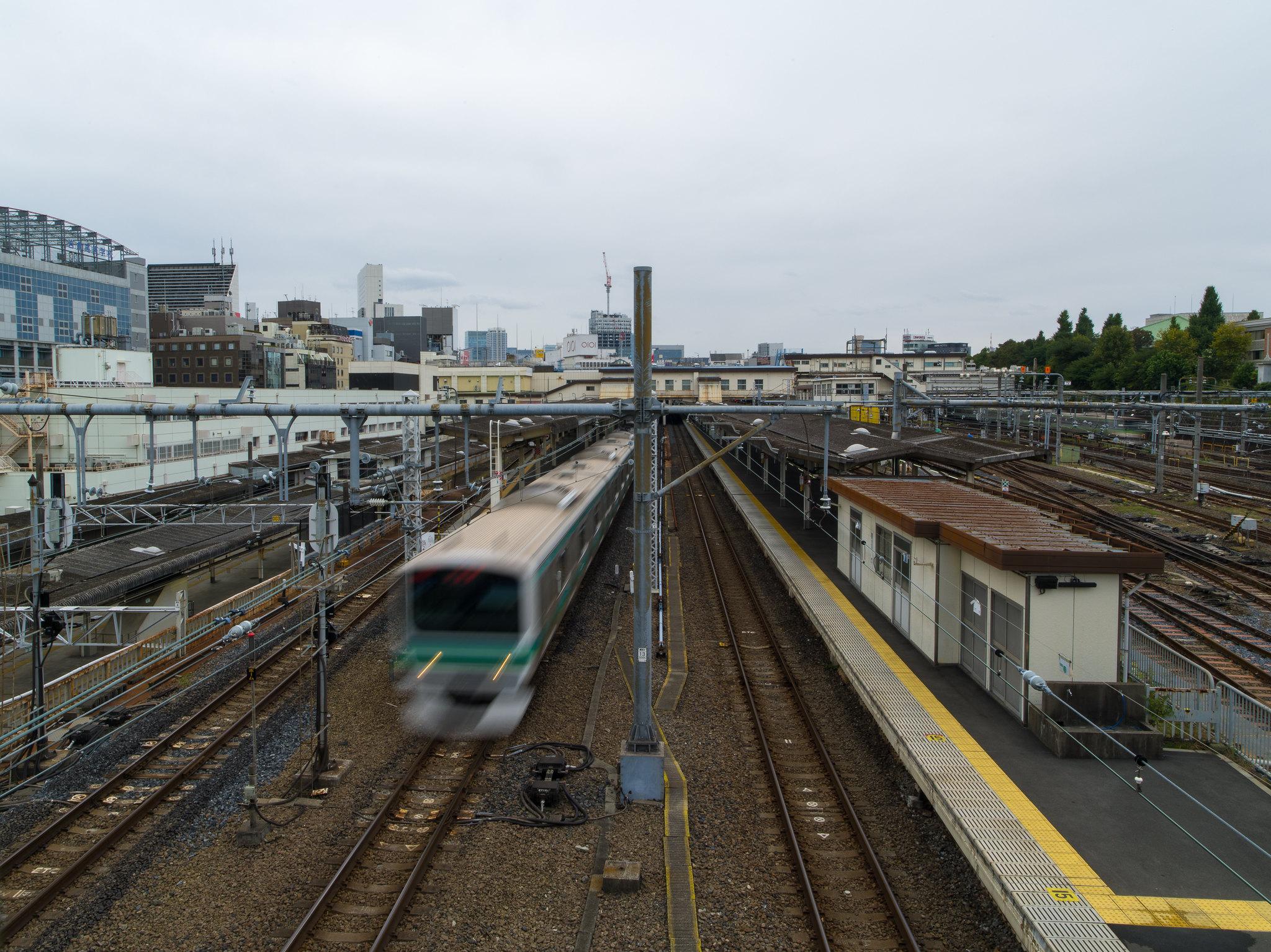 2016大沼、奧入瀨、鳴子峽與東京自由行,645D+28-45+55+150
