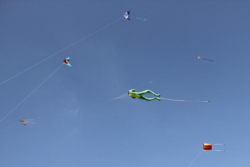 Kite Festival, Israel Museum, 2016