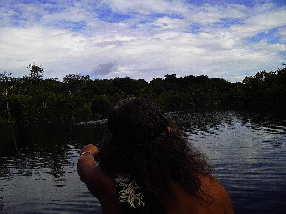 Pará do Brasil