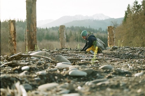WCC Projects: Habitat restoration
