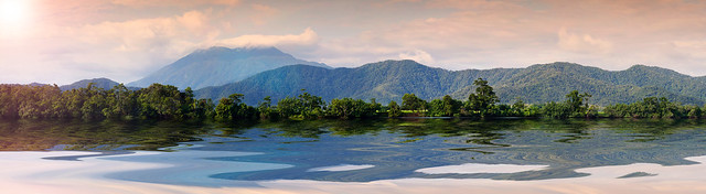 The Daintree river, Tropical North Queensland